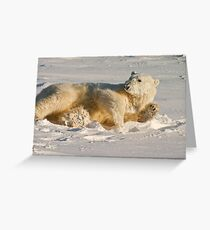 Hello. Care for a roll in the snow? Greeting Card