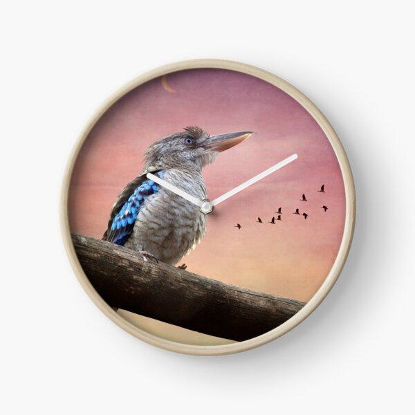Kookaburra 0243  Clock
