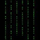 Binary by Amy Levos