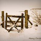 Snow gate . by Jon Baxter