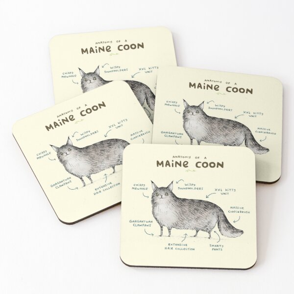 Anatomy of a Maine Coon Coasters (Set of 4)