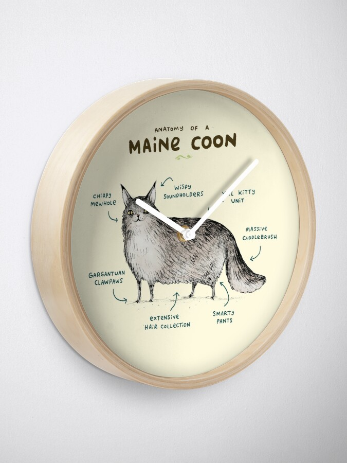 Alternate view of Anatomy of a Maine Coon Clock