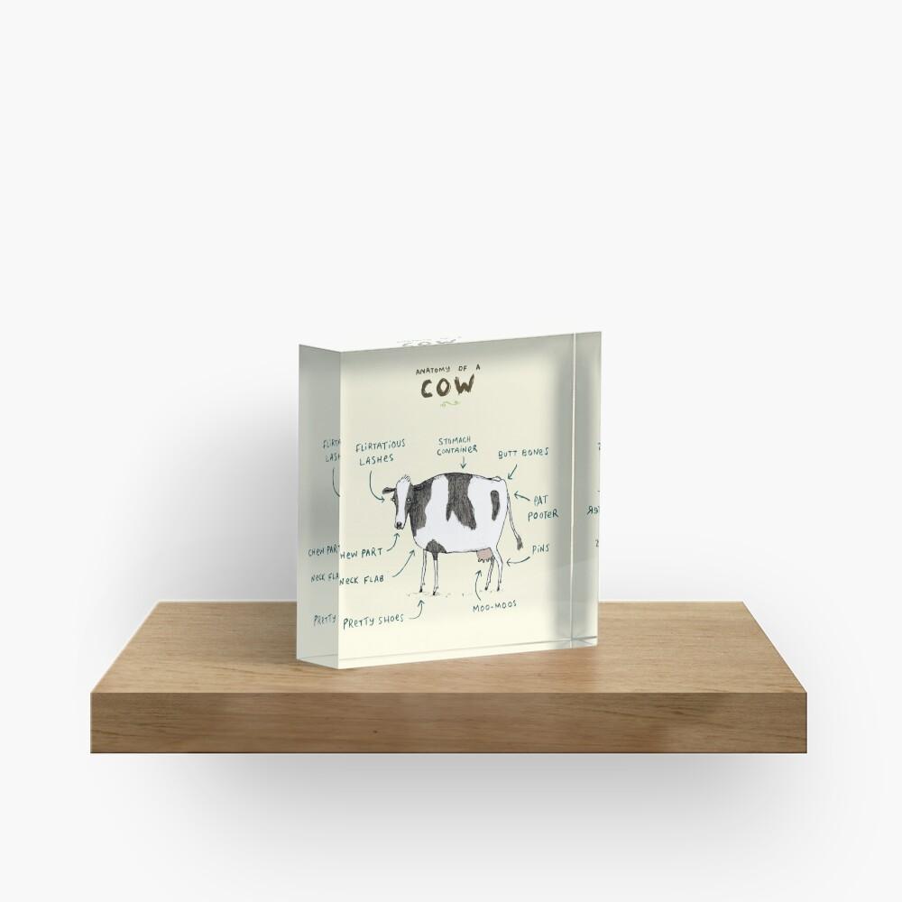 Anatomy of a Cow Acrylic Block