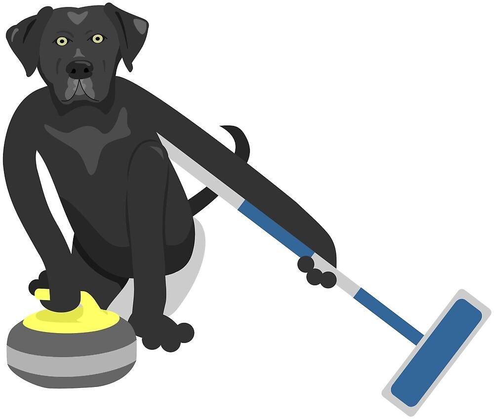 Black Labrador Retriever Curling by pounddesigns