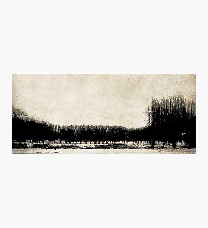 Stillness of Winter Photographic Print