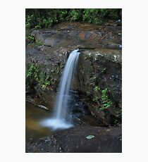 First Drop Wentworth Falls...14-11-10. Photographic Print