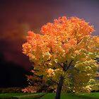 Red October by Igor Zenin