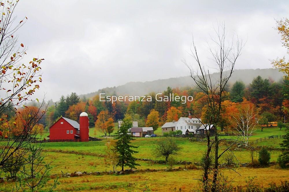 Beautiful Farm by Esperanza Gallego