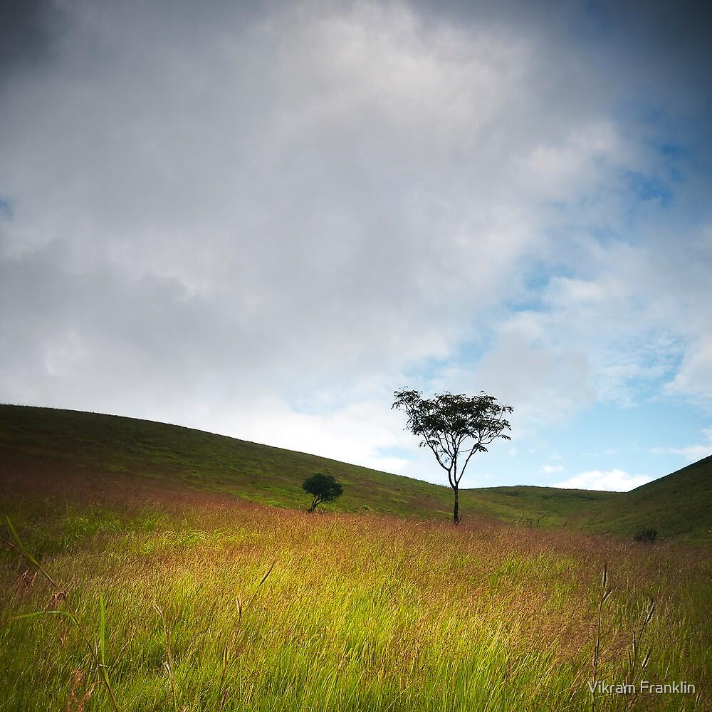 Silence is golden by Vikram Franklin