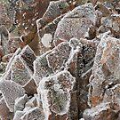 Ice Rock by tasadam