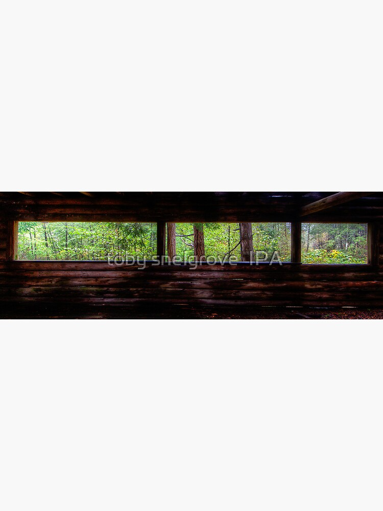 Mayne Island Abandoned Cabin - The View by tobysnelgrove