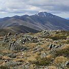 Alpine National Park - November 2010 by Erial