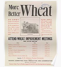 United States Department of Agriculture Poster 0219 More Better Wheat Improvement Meetings Poster
