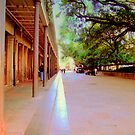 New Orleans Side Alleys by Wanda Raines