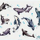 """""""Orca Pod in Watercolor"""" by Amber Marine, Killer Whale Art, © 2019 by Amber Marine ~ Wildlife Artist ~ © 2004-2019"""