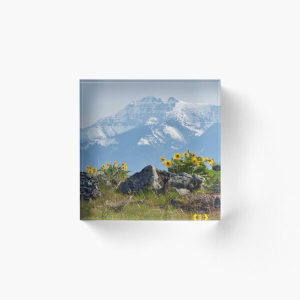 Mission Mountains Balsamroot Acrylic Block