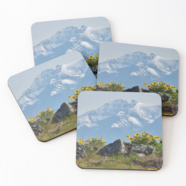 Mission Mountains Balsamroot Coasters (Set of 4)