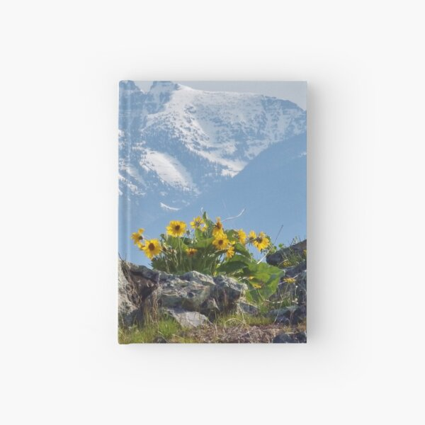Mission Mountains Balsamroot Hardcover Journal