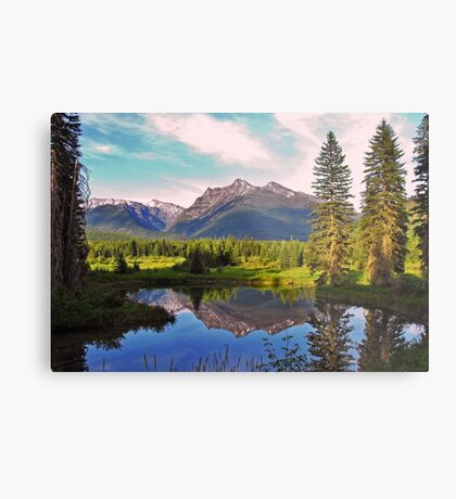 Montana Cabinet Mountains Metal Print