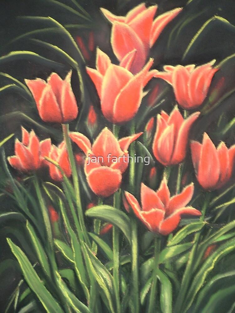 Tulips. Pastel painting. by jan farthing
