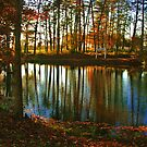 Golden Pond by Chelei