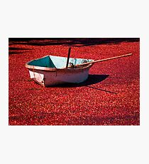 The Red Sea Photographic Print