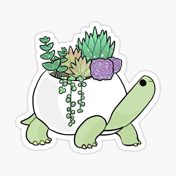 Succulent Turtle Sticker