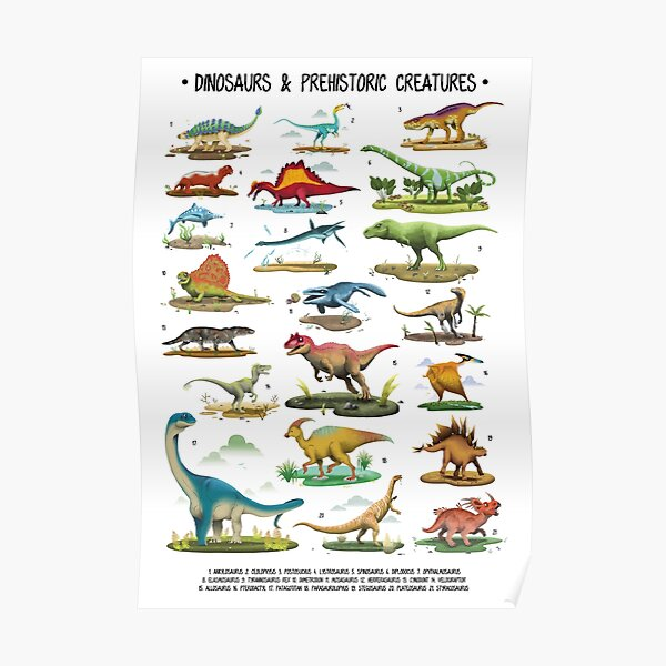 Affiche de dinosaure pour les enfants Poster