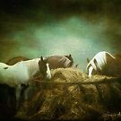 The North Road Horses as Painting by isabelleann