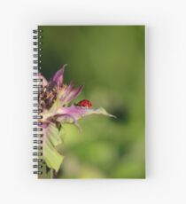 The Little Lady Rest-stop Spiral Notebook