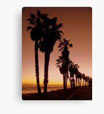Glowing Palms Canvas Print