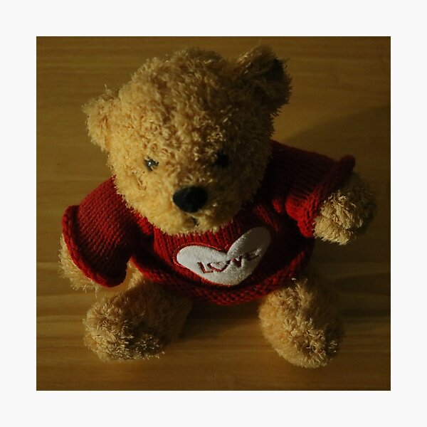 Teddy Bear of Love Photographic Print