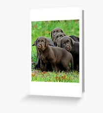 Lookin' back over my shoulder Greeting Card