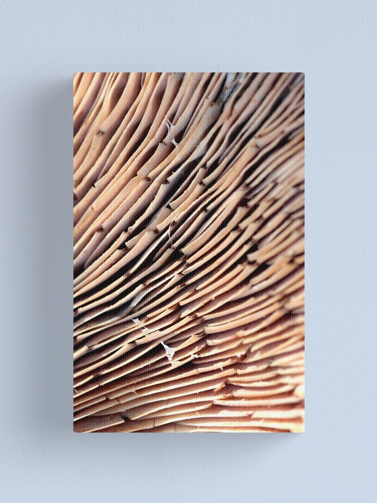 Alternate view of odd stack Canvas Print