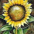 The Sunflower by Kurt Rotzinger