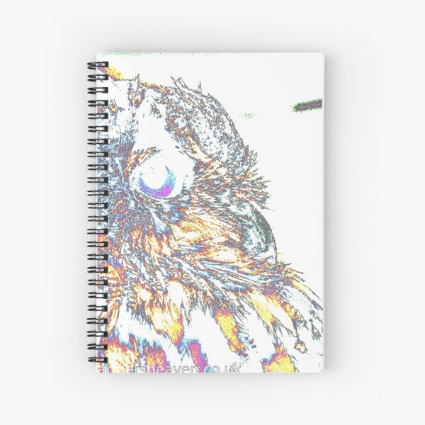 Le Owl Spiral Notebook