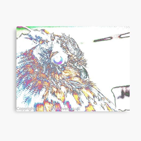 Le Owl Canvas Print