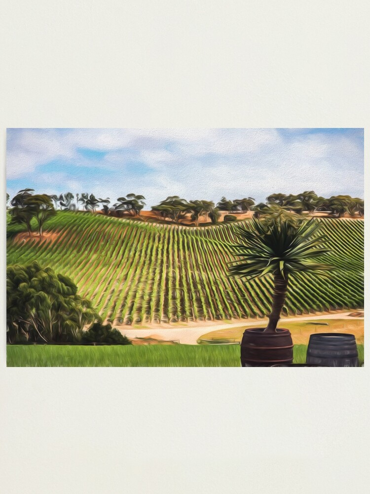 Alternate view of Southern Vineyard (digital painting) Photographic Print