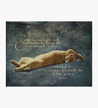 Cat Quote Photographic Print
