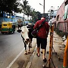 Right of Way in Mysore by sailgirl