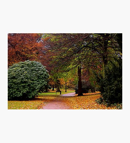 An Autumns Day Photographic Print