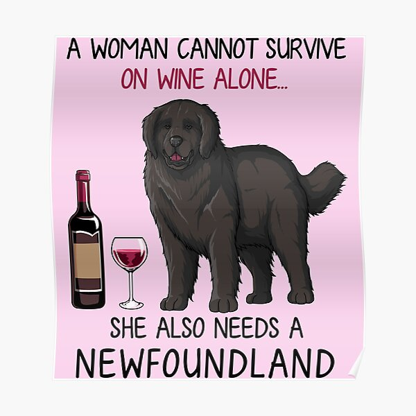 Newfoundland and wine Funny dog Poster