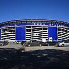 Shea Stadium by Frank Romeo