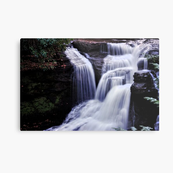 In the Lilliputain Forest Metal Print