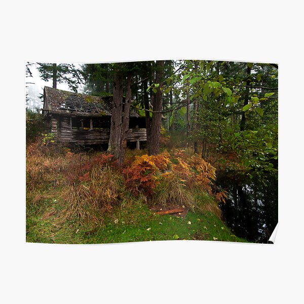 Mayne Island Abandoned Cabin - View from the Back Poster
