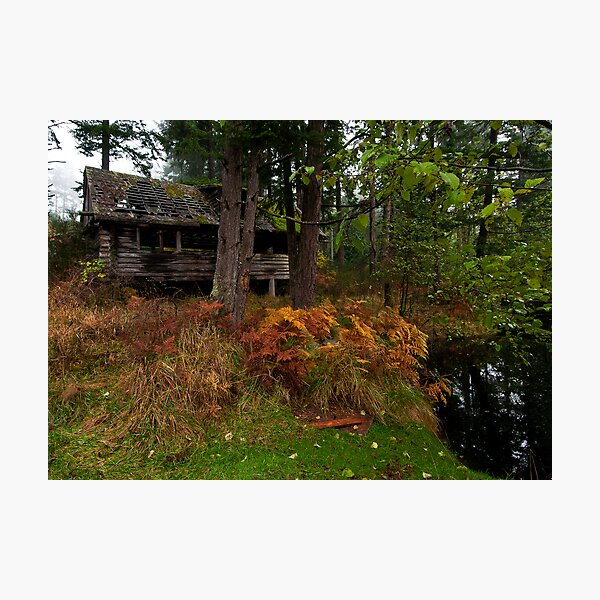 Mayne Island Abandoned Cabin - View from the Back Photographic Print