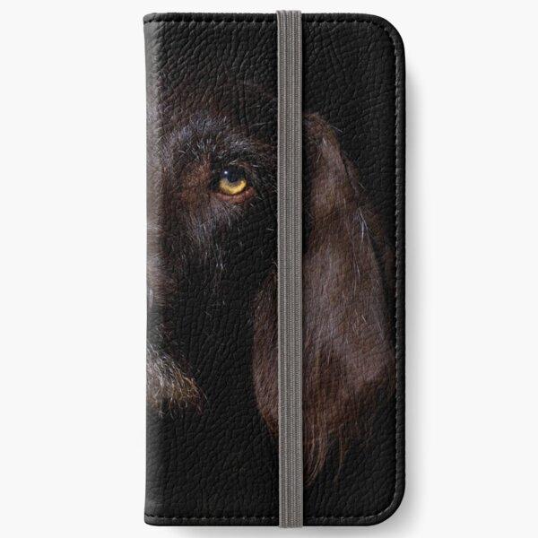 German Wirehaired Pointer Portrait iPhone Wallet