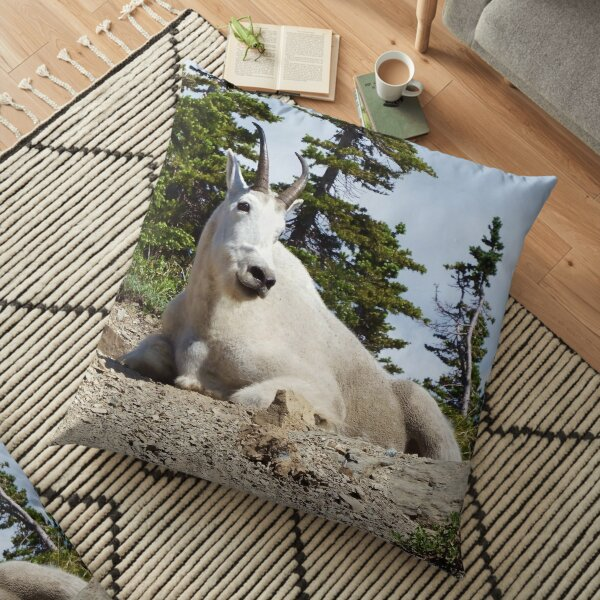 King of the Mountain Floor Pillow