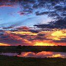 Okaukuejo Sunset by Scott Carr