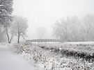 Snowing Bridge Scene 1 by Robin Clifton